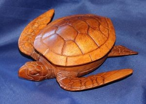 Sea Turtle Box